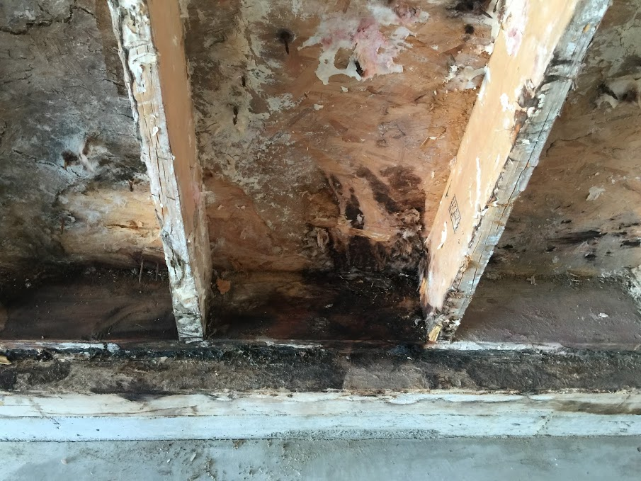 Basement Repairs and Rebuilds- Lawrence Construction